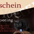 gutschein_tiershooting